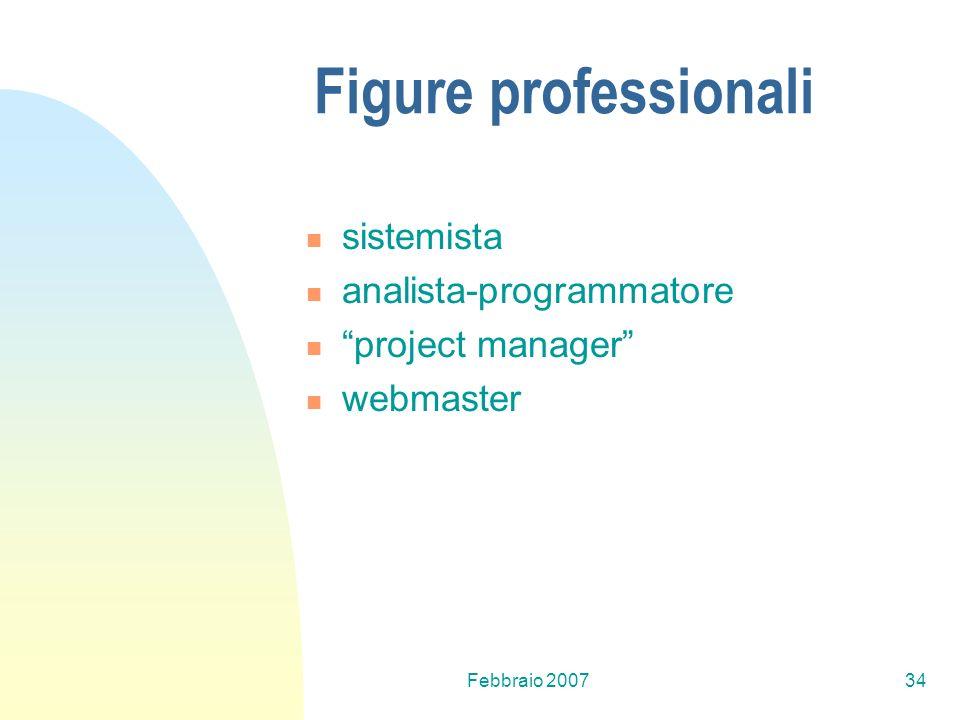 Febbraio 200734 Figure professionali sistemista analista-programmatore project manager webmaster