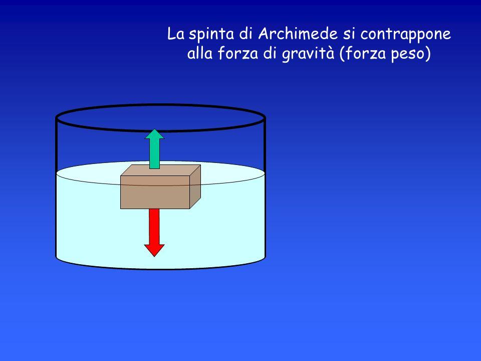 La spinta di Archimede si contrappone alla forza di gravità (forza peso)