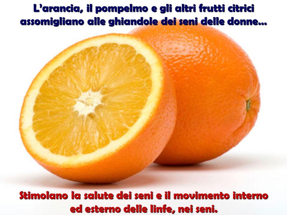 Le olive aiutano la salute e il funzionamento delle ovaie. il funzionamento delle ovaie.