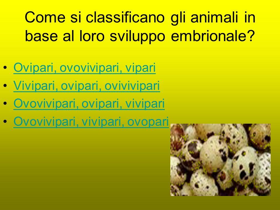 Come si classificano gli animali in base al loro sviluppo embrionale.