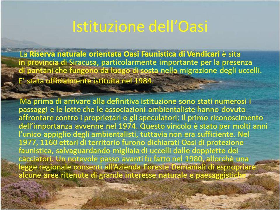 Istituzione dellOasi La Riserva naturale orientata Oasi Faunistica di Vendicari è sita in provincia di Siracusa, particolarmente importante per la presenza di pantani che fungono da luogo di sosta nella migrazione degli uccelli.