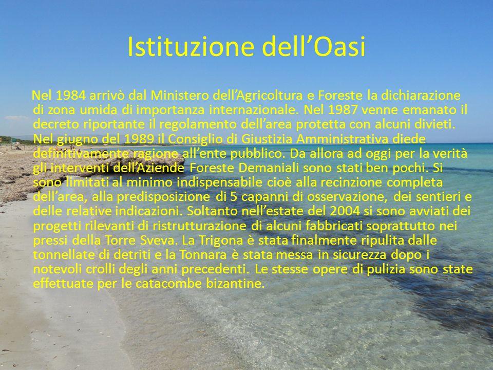 Istituzione dellOasi Nel 1984 arrivò dal Ministero dellAgricoltura e Foreste la dichiarazione di zona umida di importanza internazionale. Nel 1987 ven