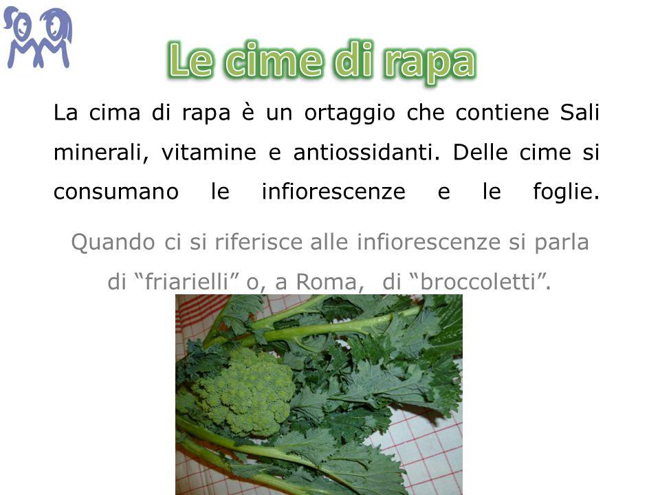 La cima di rapa è un ortaggio che contiene Sali minerali, vitamine e antiossidanti. Delle cime si consumano le infiorescenze e le foglie. Quando ci si