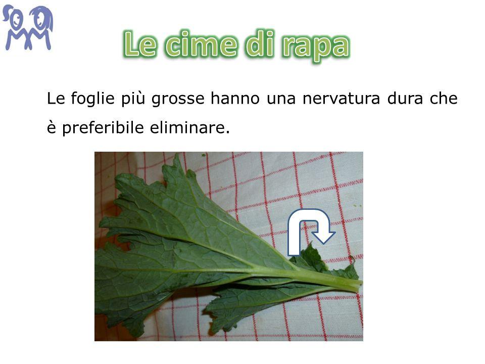 Le foglie più grosse hanno una nervatura dura che è preferibile eliminare.