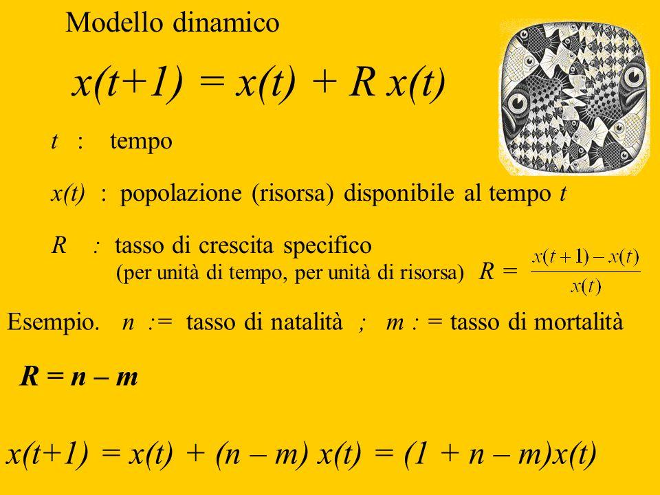 Modello dinamico x(t+1) = x(t) + R x(t ) t : tempo x(t) : popolazione (risorsa) disponibile al tempo t R : tasso di crescita specifico (per unità di t