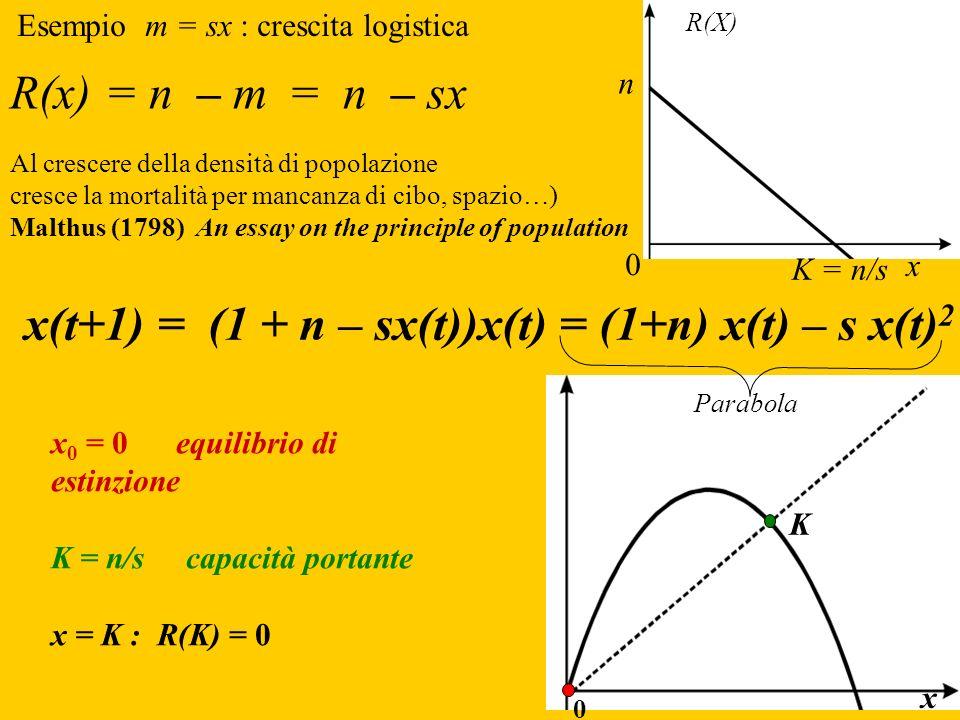 x(t+1) = (1 + n – sx(t))x(t) = (1+n) x(t) – s x(t) 2 x 0 = 0 equilibrio di estinzione K = n/s capacità portante x = K : R(K) = 0 Parabola R(x) = n – m