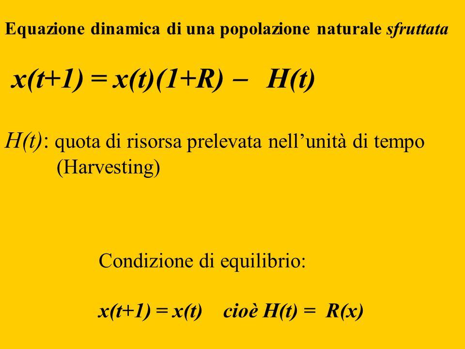Condizione di equilibrio: x(t+1) = x(t) cioè H(t) = R(x) Equazione dinamica di una popolazione naturale sfruttata x(t+1) = x(t)(1+R) H(t) H(t): quota