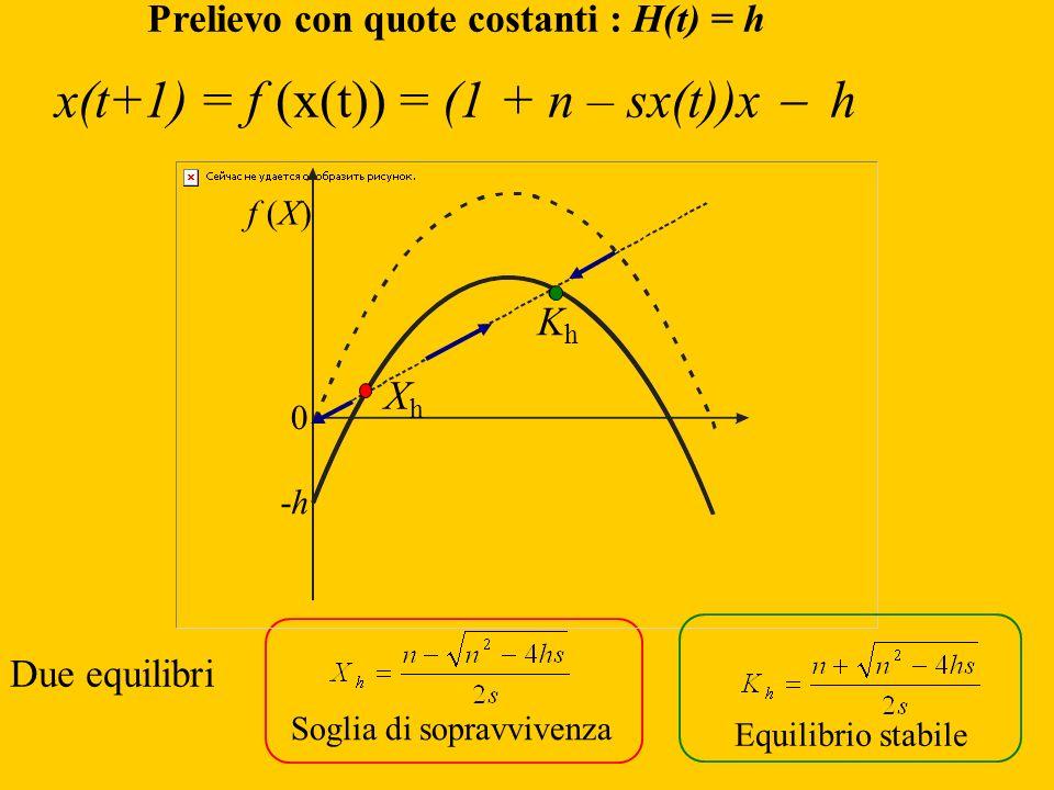 Prelievo con quote costanti : H(t) = h x(t+1) = f (x(t)) = (1 + n – sx(t))x h Due equilibri Soglia di sopravvivenza Equilibrio stabile 0 f (X) -h-h Kh