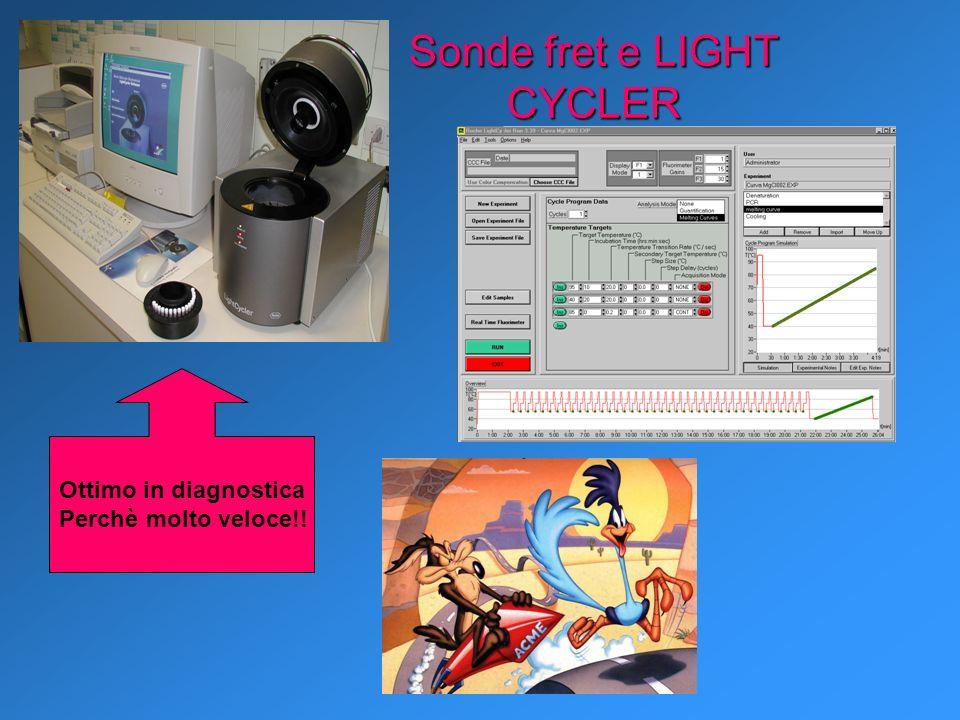 Sonde fret e LIGHT CYCLER Ottimo in diagnostica Perchè molto veloce!!