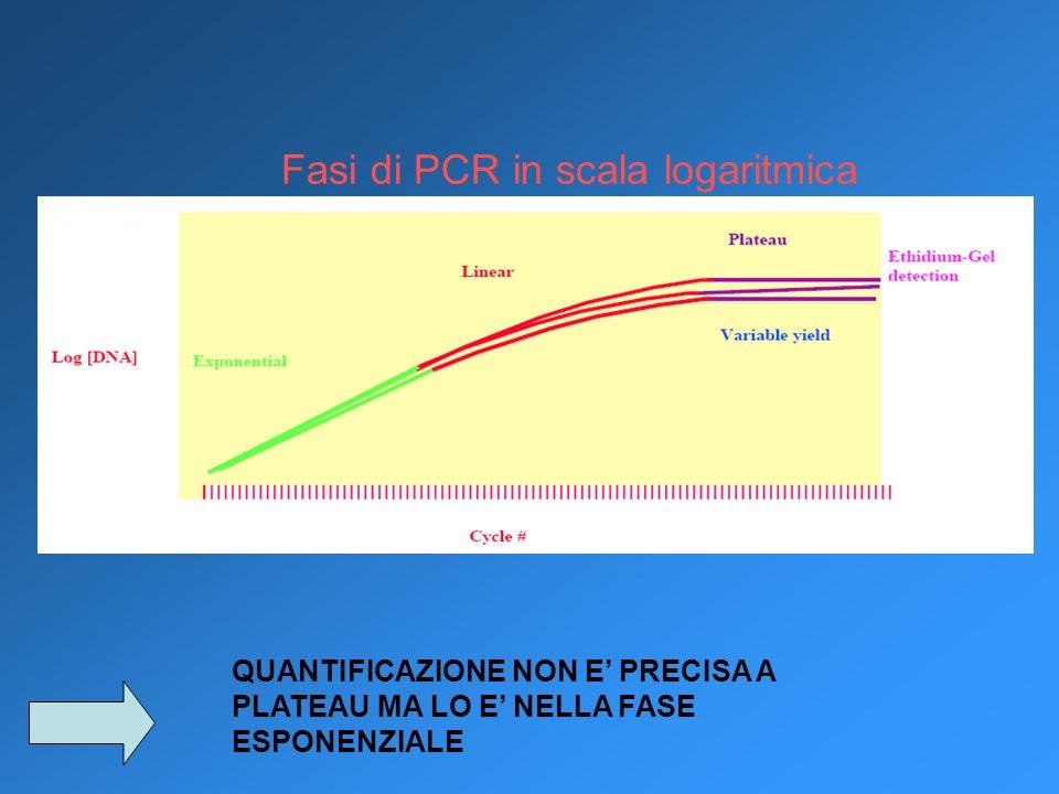 Fasi di PCR in scala logaritmica QUANTIFICAZIONE NON E PRECISA A PLATEAU MA LO E NELLA FASE ESPONENZIALE