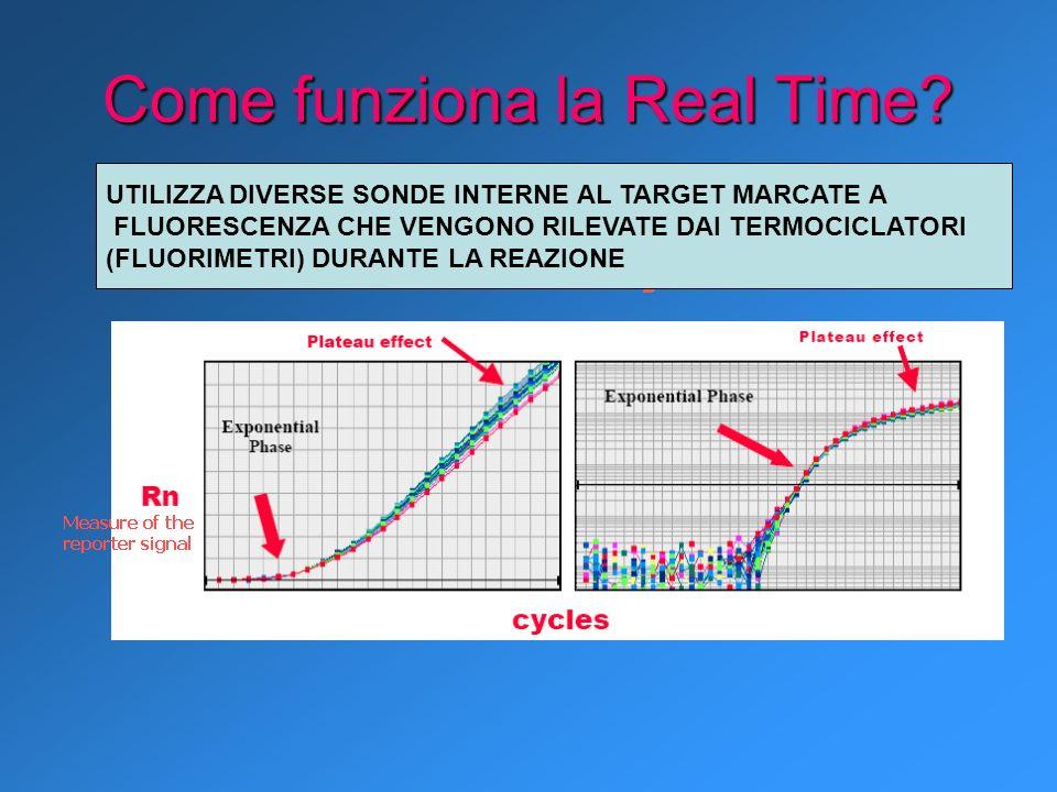 Come funziona la Real Time? UTILIZZA DIVERSE SONDE INTERNE AL TARGET MARCATE A FLUORESCENZA CHE VENGONO RILEVATE DAI TERMOCICLATORI (FLUORIMETRI) DURA