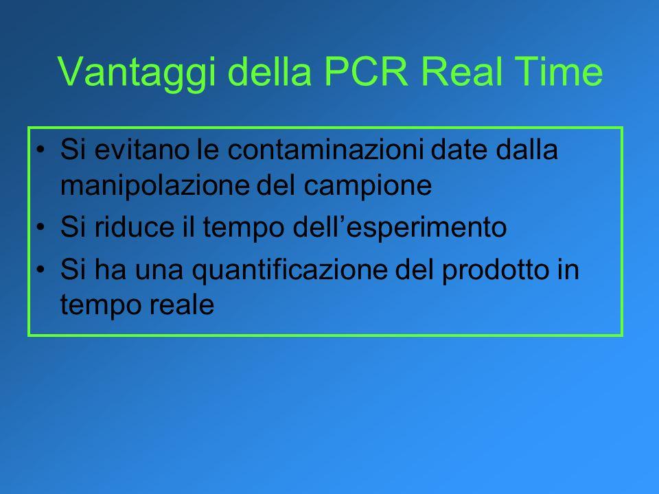 Vantaggi della PCR Real Time Si evitano le contaminazioni date dalla manipolazione del campione Si riduce il tempo dellesperimento Si ha una quantific