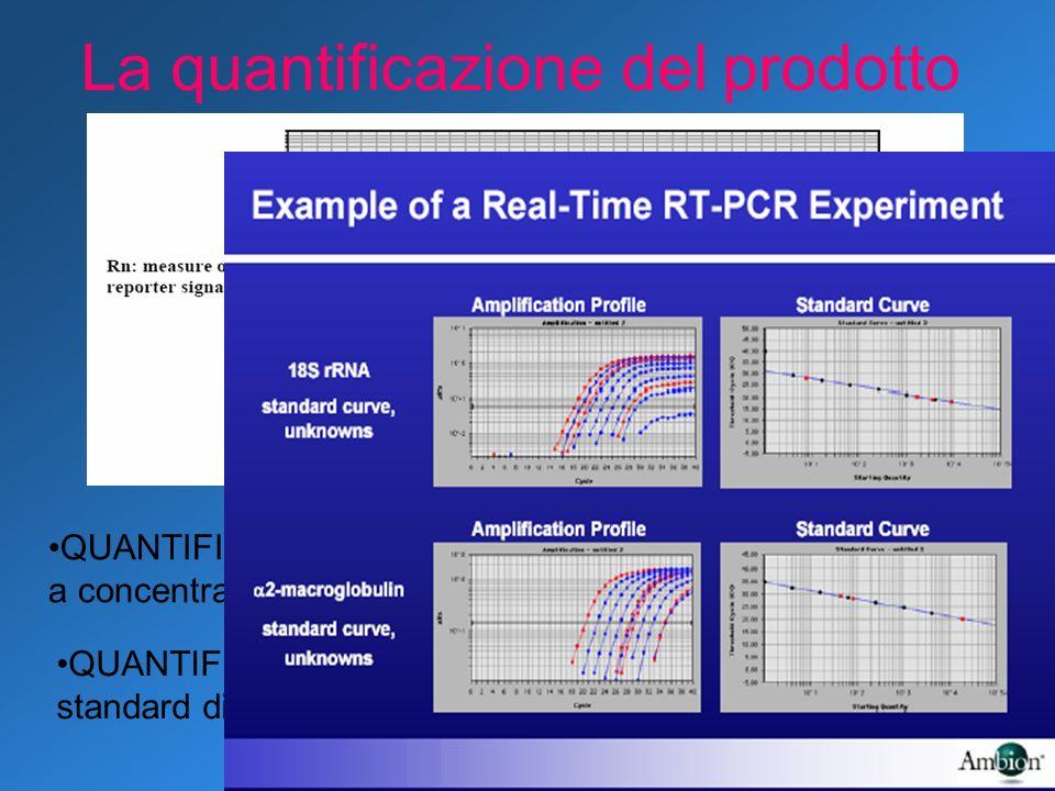 La quantificazione del prodotto QUANTIFICAZIONE ASSOLUTA tramite curve standard a concentrazione nota QUANTIFICAZIONE RELATIVA tramite curve standard