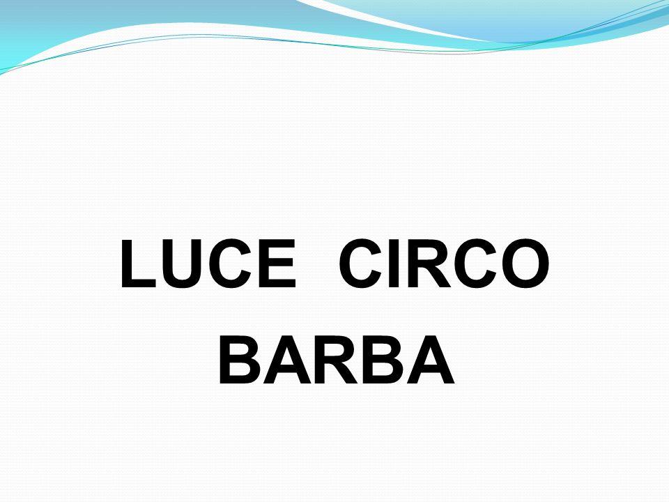 LUCE CIRCO BARBA