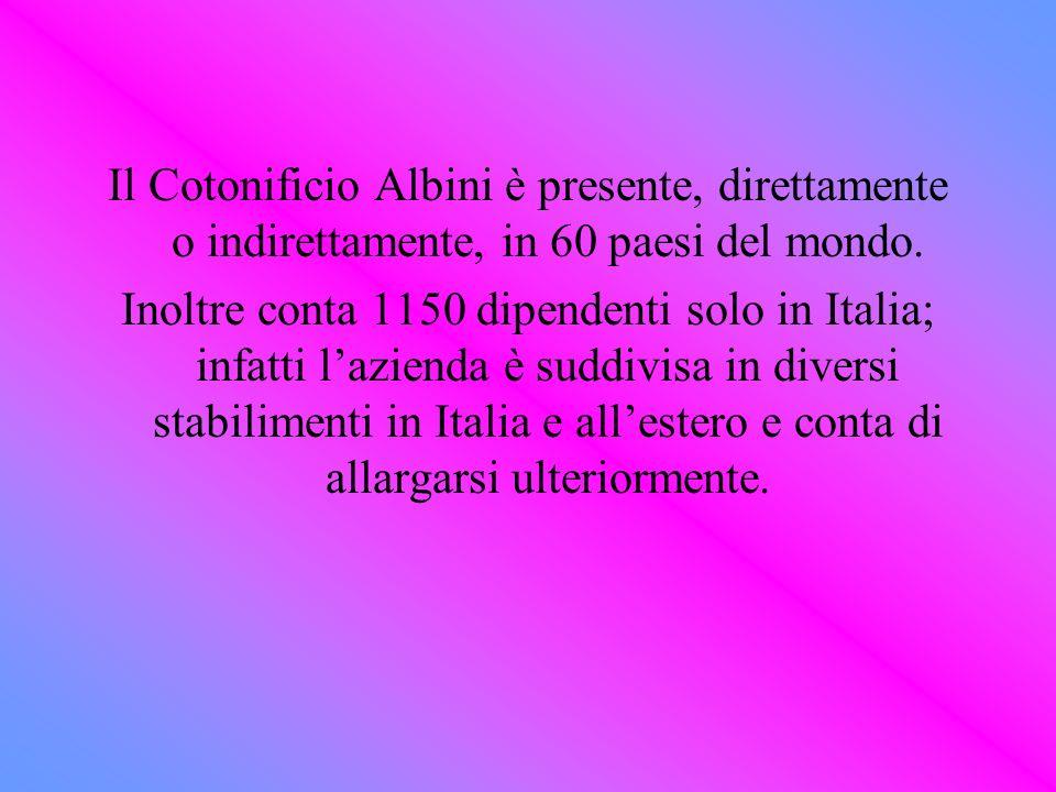 Il Cotonificio Albini è presente, direttamente o indirettamente, in 60 paesi del mondo. Inoltre conta 1150 dipendenti solo in Italia; infatti lazienda