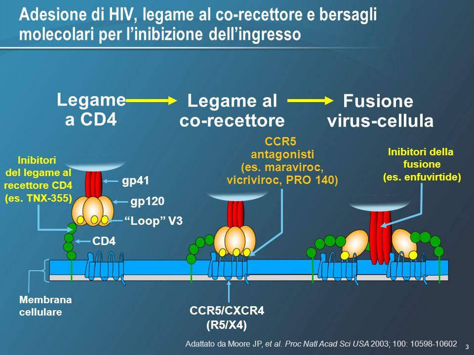 3 1/9/2007 - 730pmeSlide - P3591 - Template - Blue - No Logo Adesione di HIV, legame al co-recettore e bersagli molecolari per linibizione dellingress