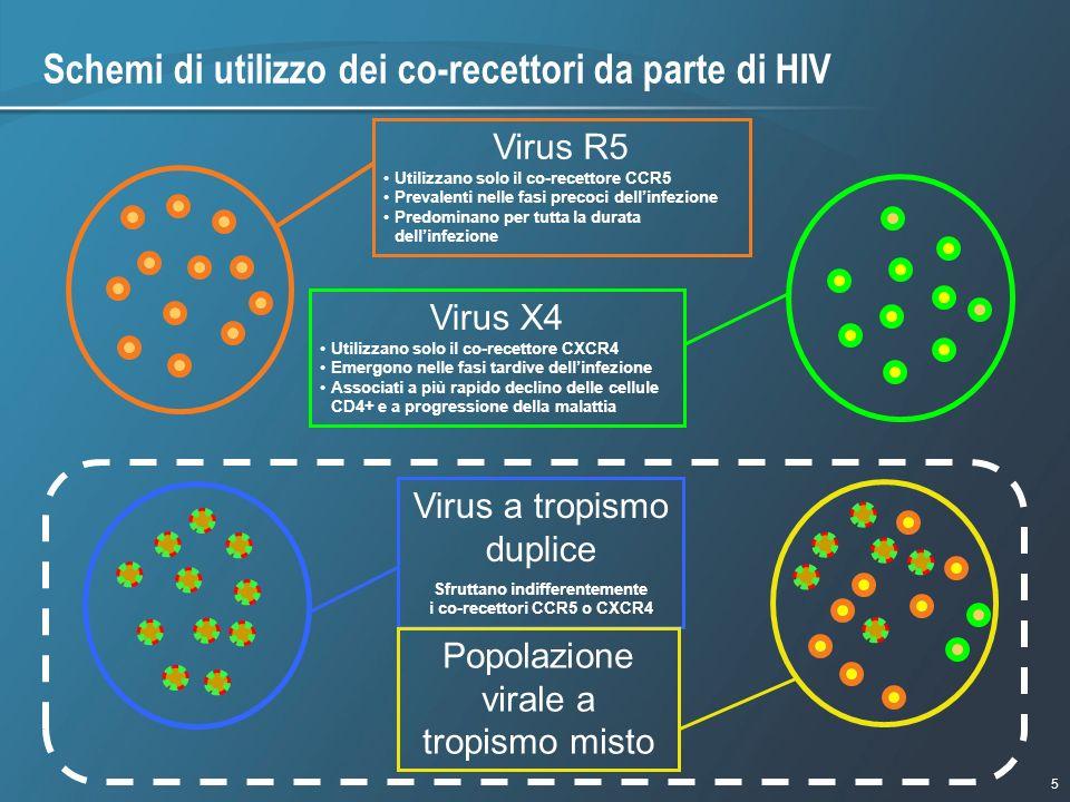 5 1/9/2007 - 730pmeSlide - P3591 - Template - Blue - No Logo Schemi di utilizzo dei co-recettori da parte di HIV Virus R5 Utilizzano solo il co-recett