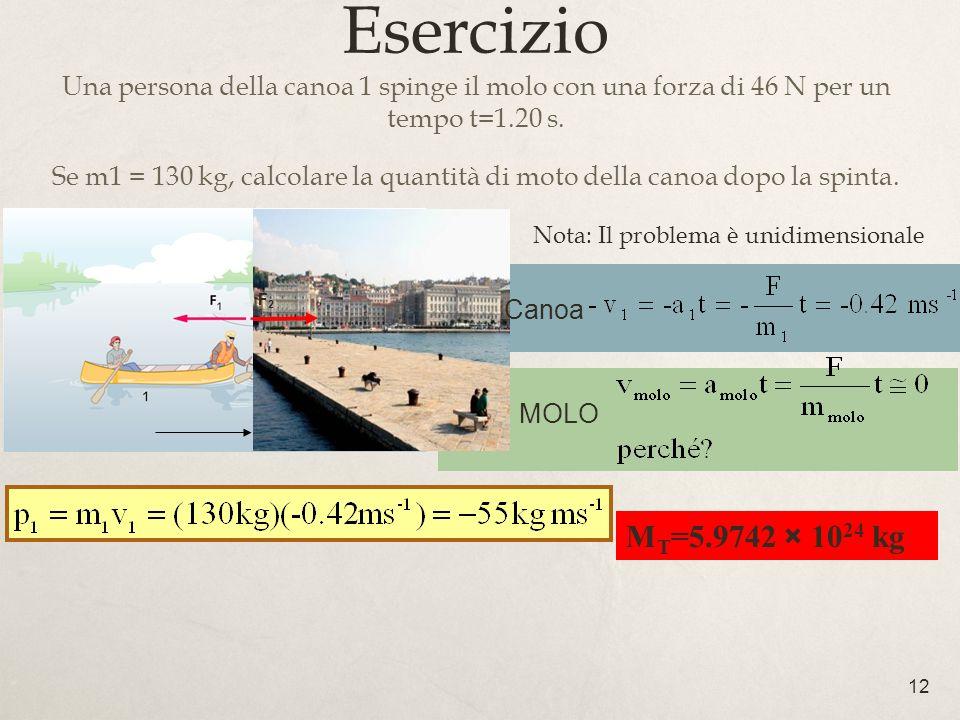 12 Esercizio Una persona della canoa 1 spinge il molo con una forza di 46 N per un tempo t=1.20 s. Se m1 = 130 kg, calcolare la quantità di moto della