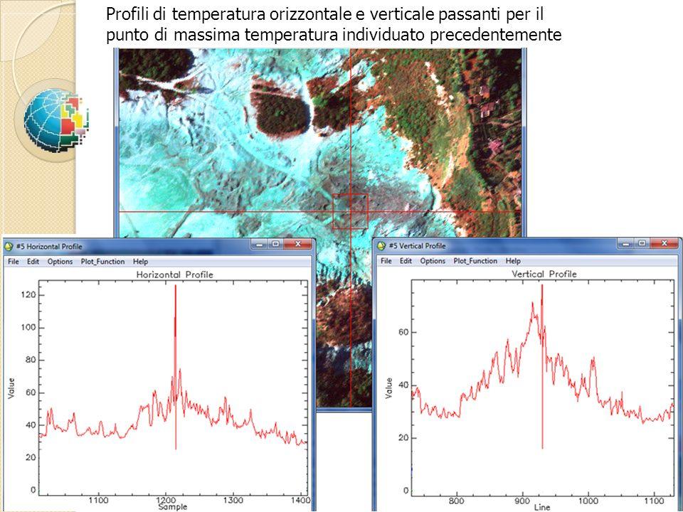 Profili di temperatura orizzontale e verticale passanti per il punto di massima temperatura individuato precedentemente