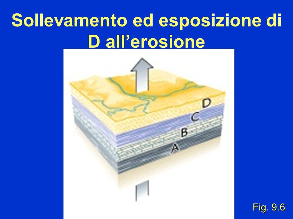 Sollevamento ed esposizione di D allerosione