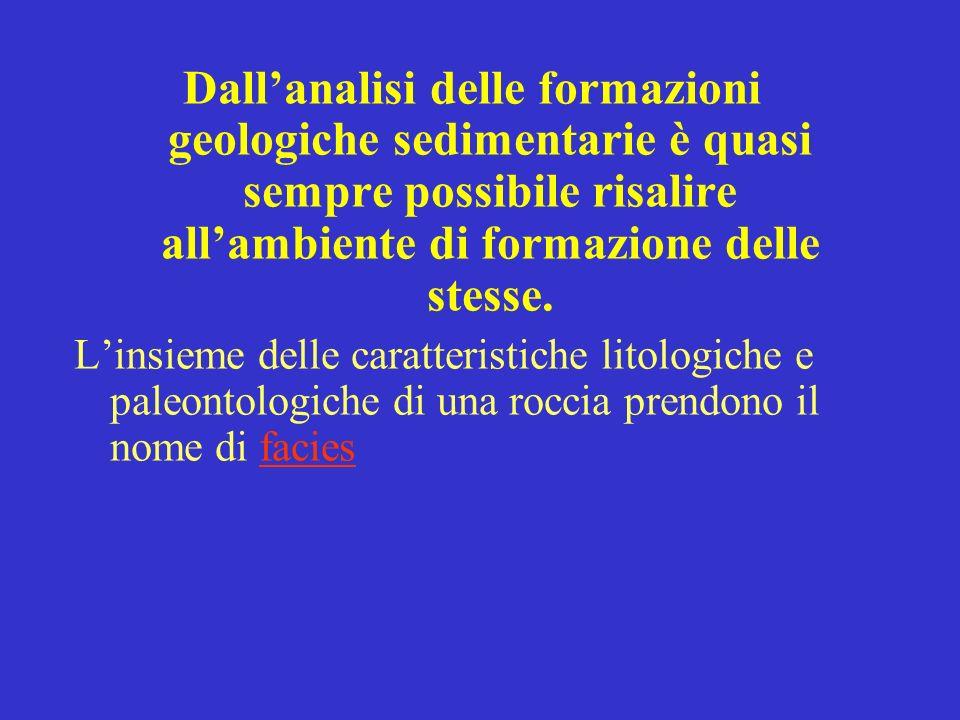 Dallanalisi delle formazioni geologiche sedimentarie è quasi sempre possibile risalire allambiente di formazione delle stesse.