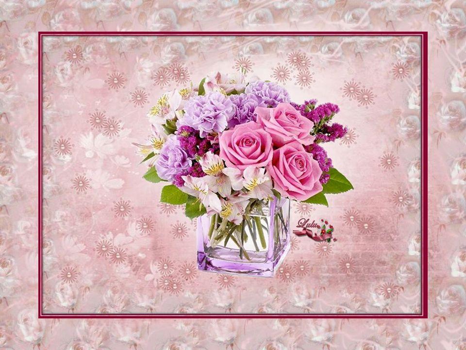 Pensava: comè possibile che da una pianta con tante spine aguzze nasca un fiore così bello?