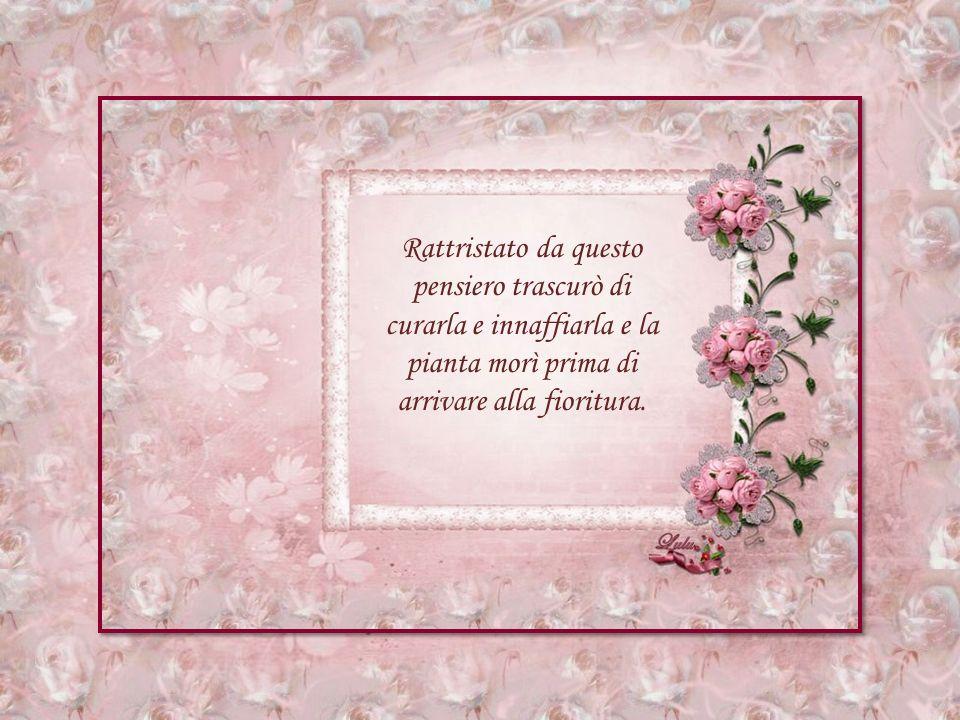 Composizione e grafica: Lulu Testo dal web tradotto dal francese Musica: Serenata di E.