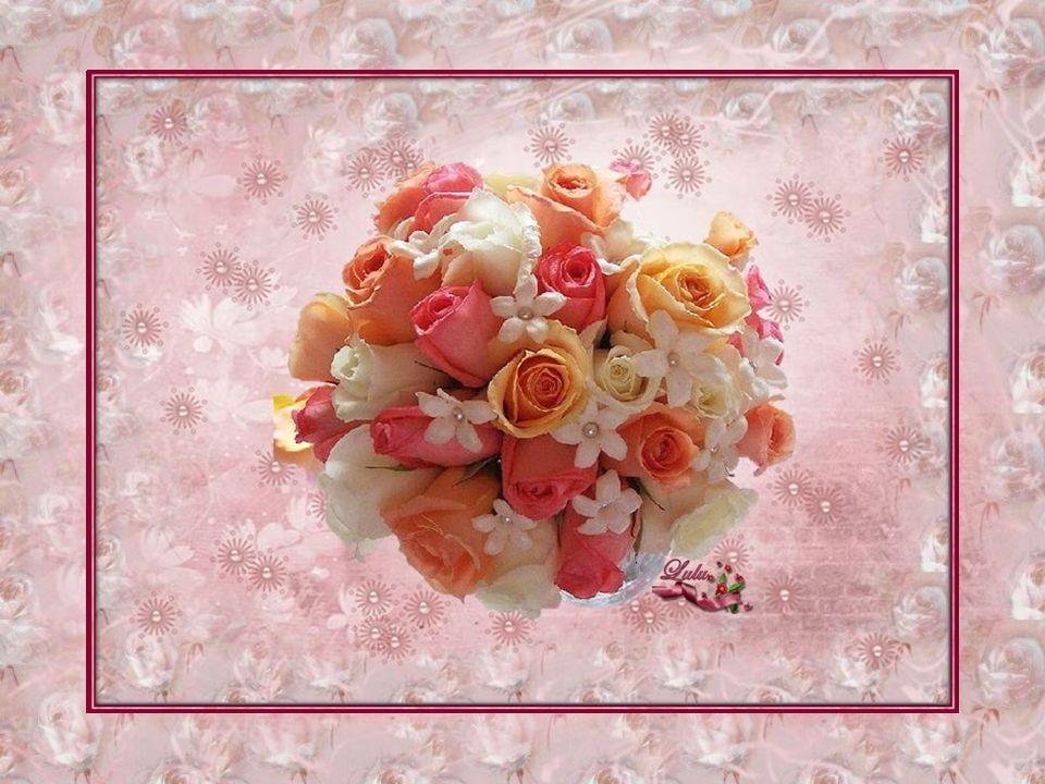 Rattristato da questo pensiero trascurò di curarla e innaffiarla e la pianta morì prima di arrivare alla fioritura.