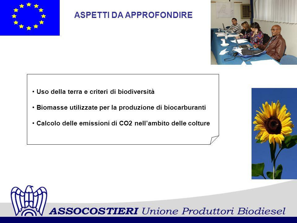 ASPETTI DA APPROFONDIRE Uso della terra e criteri di biodiversità Biomasse utilizzate per la produzione di biocarburanti Calcolo delle emissioni di CO
