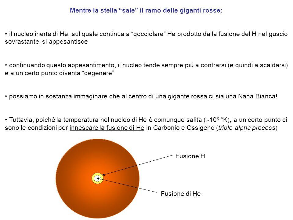 Mentre la stella sale il ramo delle giganti rosse: il nucleo inerte di He, sul quale continua a gocciolare He prodotto dalla fusione del H nel guscio