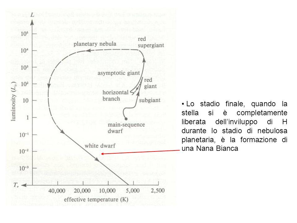 Lo stadio finale, quando la stella si è completamente liberata dellinviluppo di H durante lo stadio di nebulosa planetaria, è la formazione di una Nana Bianca