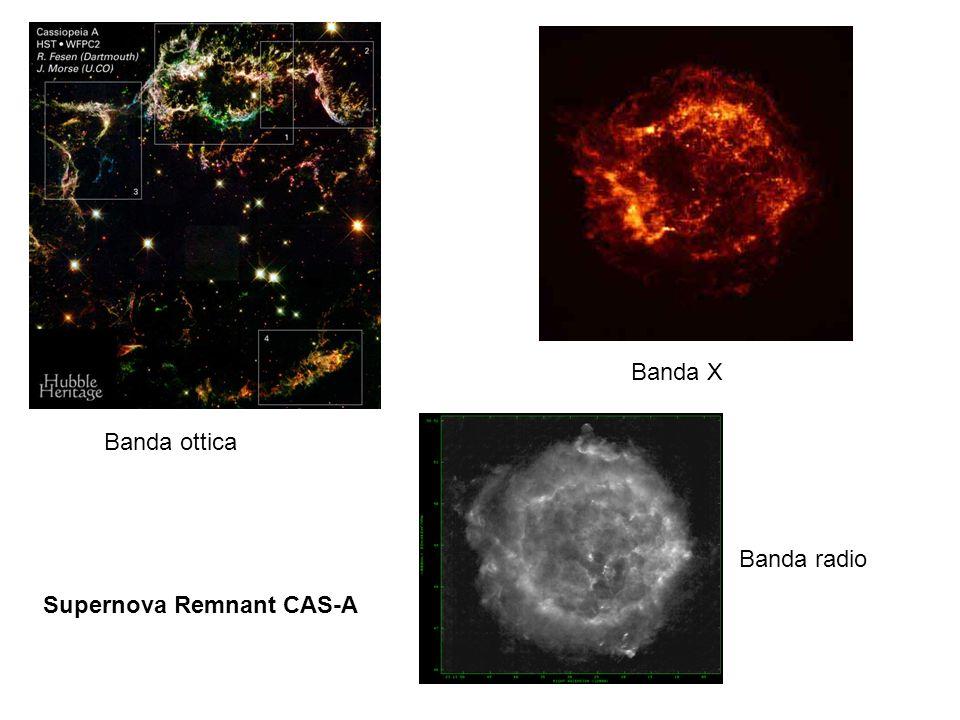Supernova Remnant CAS-A Banda ottica Banda X Banda radio