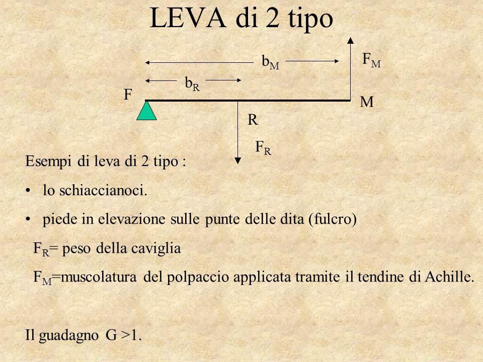 LEVA di 2 tipo bRbR bMbM FRFR FMFM F M R Esempi di leva di 2 tipo : lo schiaccianoci.