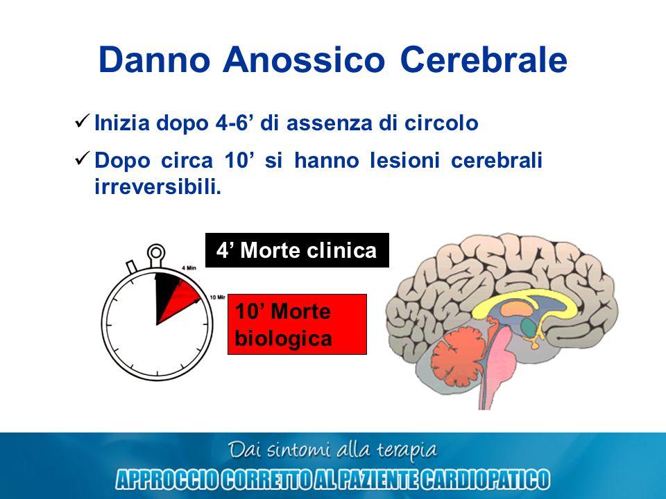 Danno Anossico Cerebrale Inizia dopo 4-6 di assenza di circolo Dopo circa 10 si hanno lesioni cerebrali irreversibili. 4 Morte clinica 10 Morte biolog