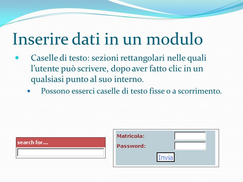 Inserire dati in un modulo Caselle di testo: sezioni rettangolari nelle quali lutente può scrivere, dopo aver fatto clic in un qualsiasi punto al suo interno.