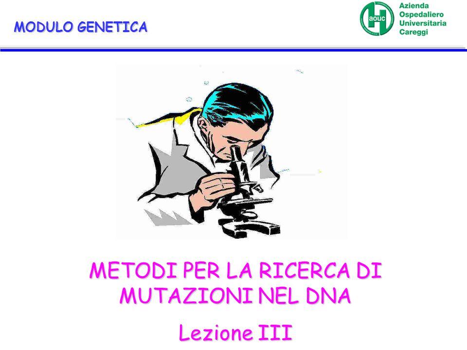MODULO GENETICA METODI PER LA RICERCA DI MUTAZIONI NEL DNA Lezione III