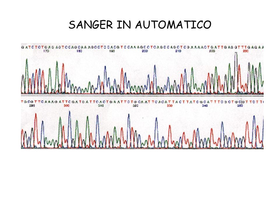SANGER IN AUTOMATICO