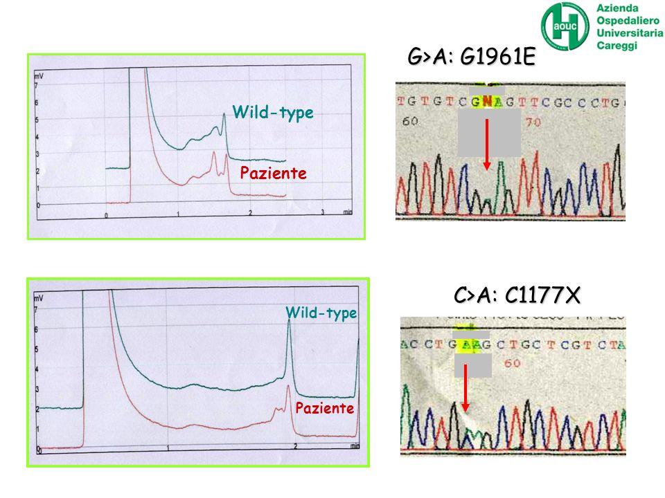 G>A: G1961E C>A: C1177X Wild-type Paziente Wild-type Paziente