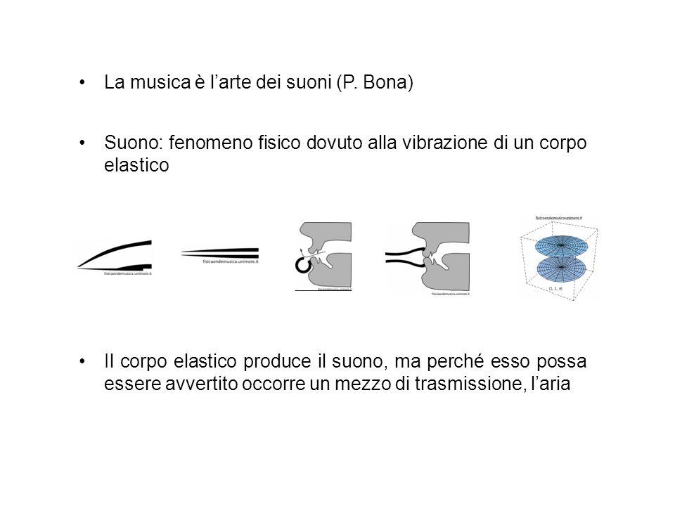 La musica è larte dei suoni (P. Bona) Suono: fenomeno fisico dovuto alla vibrazione di un corpo elastico Il corpo elastico produce il suono, ma perché