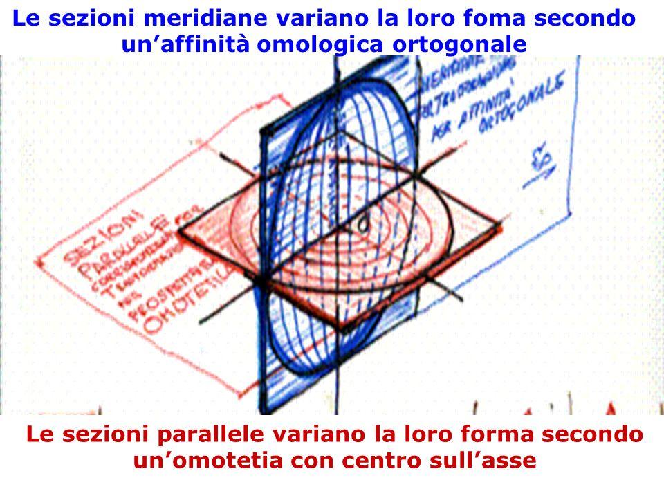 Le sezioni meridiane variano la loro foma secondo unaffinità omologica ortogonale Le sezioni parallele variano la loro forma secondo unomotetia con ce