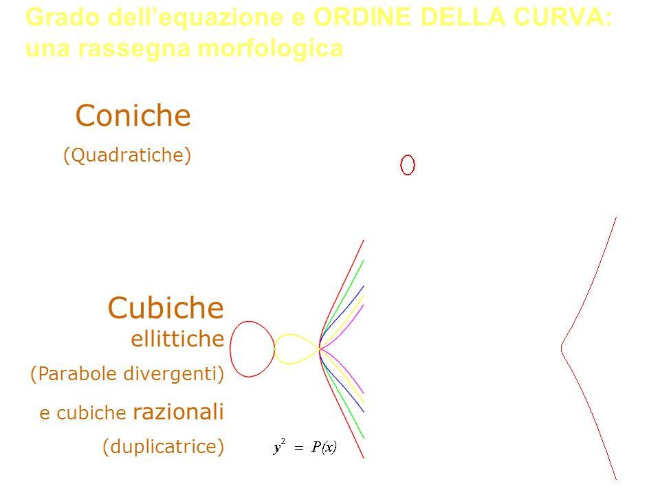 Grado dellequazione e ORDINE DELLA CURVA: una rassegna morfologica Cubiche ellittiche (Parabole divergenti) e cubiche razionali (duplicatrice) Coniche