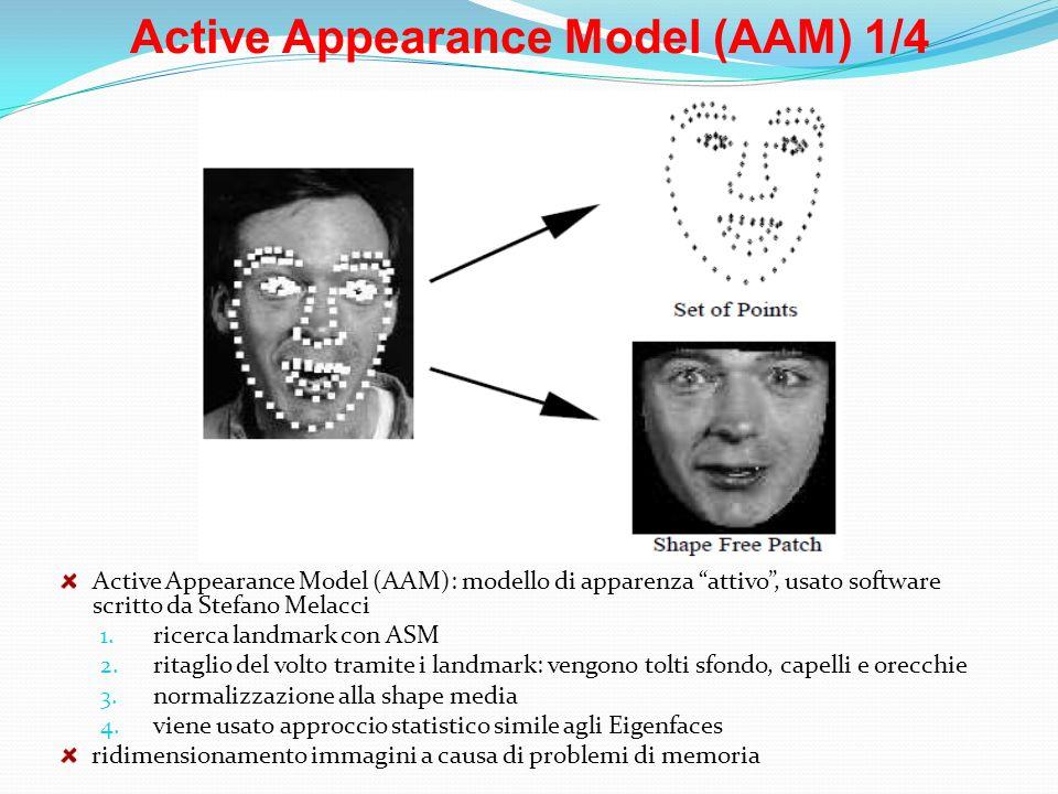 Active Appearance Model (AAM) 1/4 Active Appearance Model (AAM): modello di apparenza attivo, usato software scritto da Stefano Melacci 1. ricerca lan