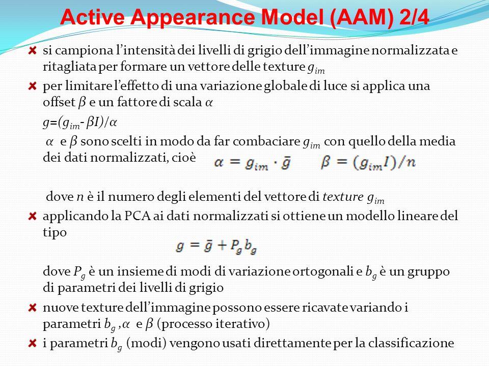 Active Appearance Model (AAM) 2/4 si campiona lintensità dei livelli di grigio dellimmagine normalizzata e ritagliata per formare un vettore delle tex