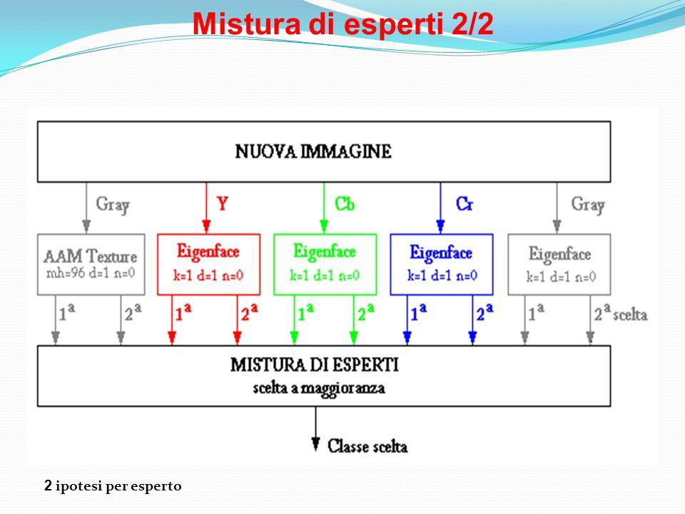 Mistura di esperti 2/2 2 ipotesi per esperto