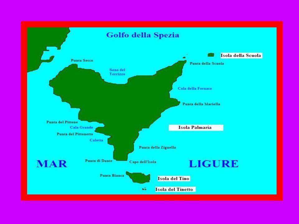 Gorgona Giannutri Isola del Giglio Pianosa è situata nel mar Tirreno, fà parte del parco nazionale dell'Arcipelago Toscano. Di dimensioni medie (10,3