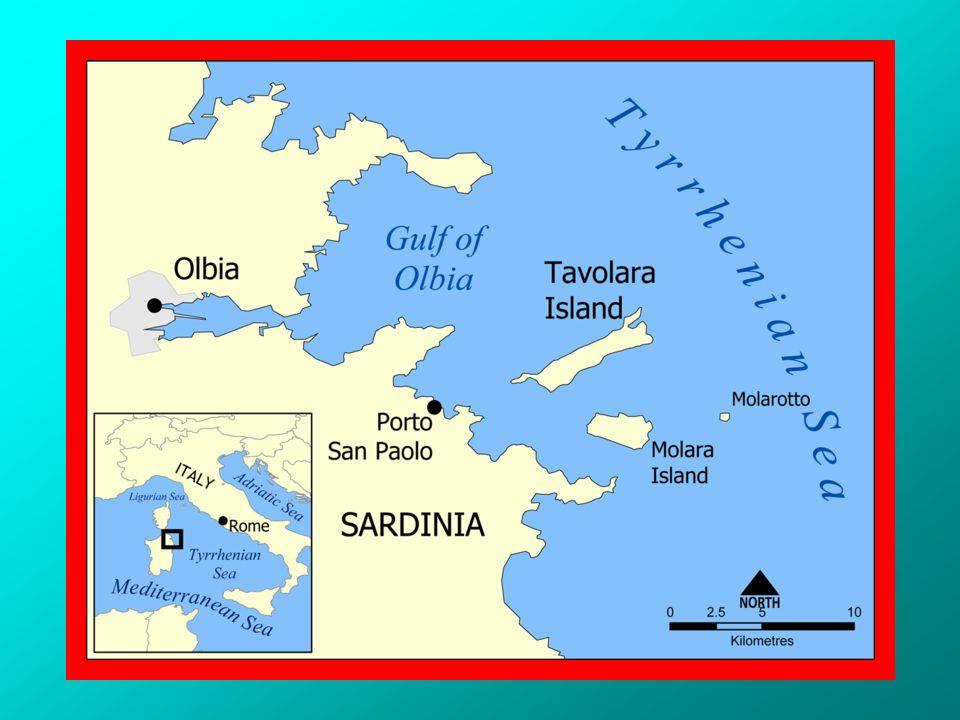 Lisola della Gallinara è un isolotto di circa 11 ettari di fronte ad Albenga con un altezza di 87 mt. ha la forma di una grande testuggine con il suo
