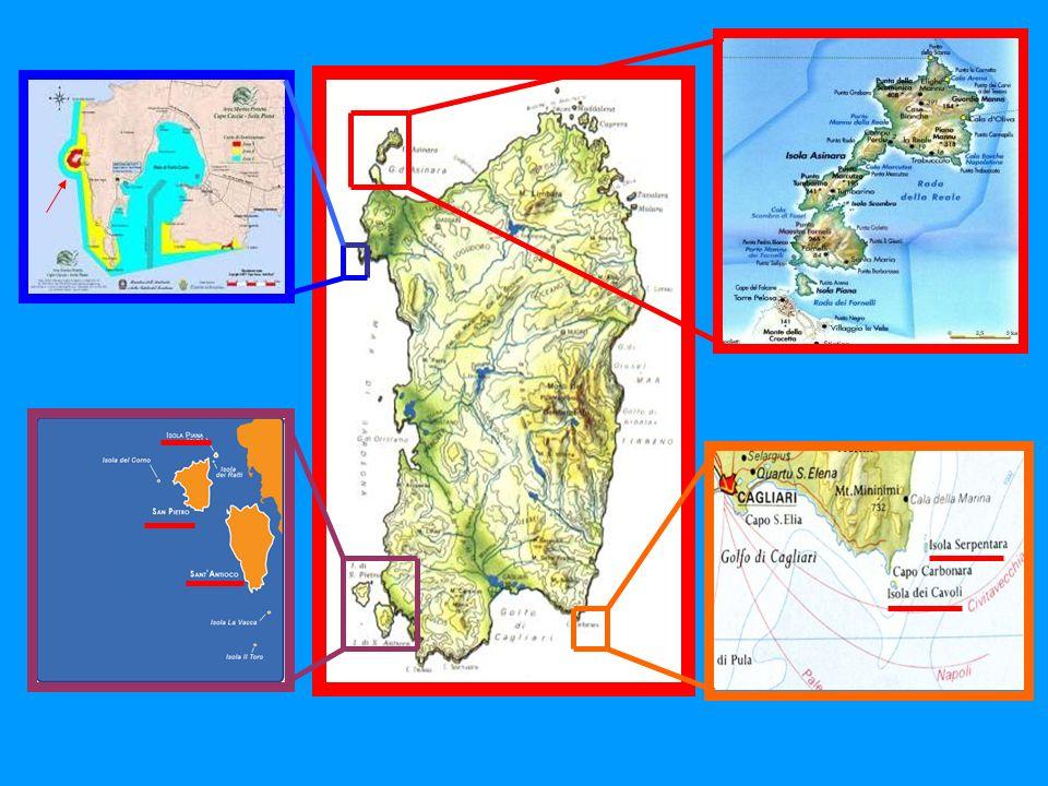 Spargi con una superficie di 4,20 km² è la terza per estensione, ha uno sviluppo costiero di 11 km e la quota più alta raggiunge i 153 mt. s.l.m. Di n