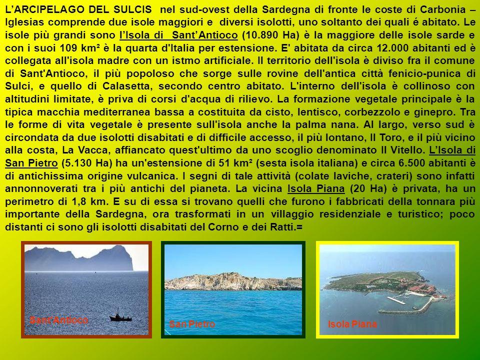 LIsola dellAsinara si trova nella Sardegna nord-occidentale dalla quale è separata da uno stretto canale di fronte Stintino nella provincia di Sassari