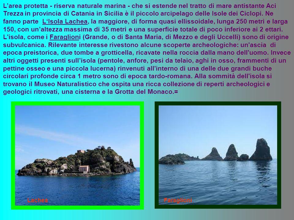 Larea protetta - riserva naturale marina - che si estende nel tratto di mare antistante Aci Trezza in provincia di Catania in Sicilia è il piccolo arcipelago delle Isole dei Ciclopi.