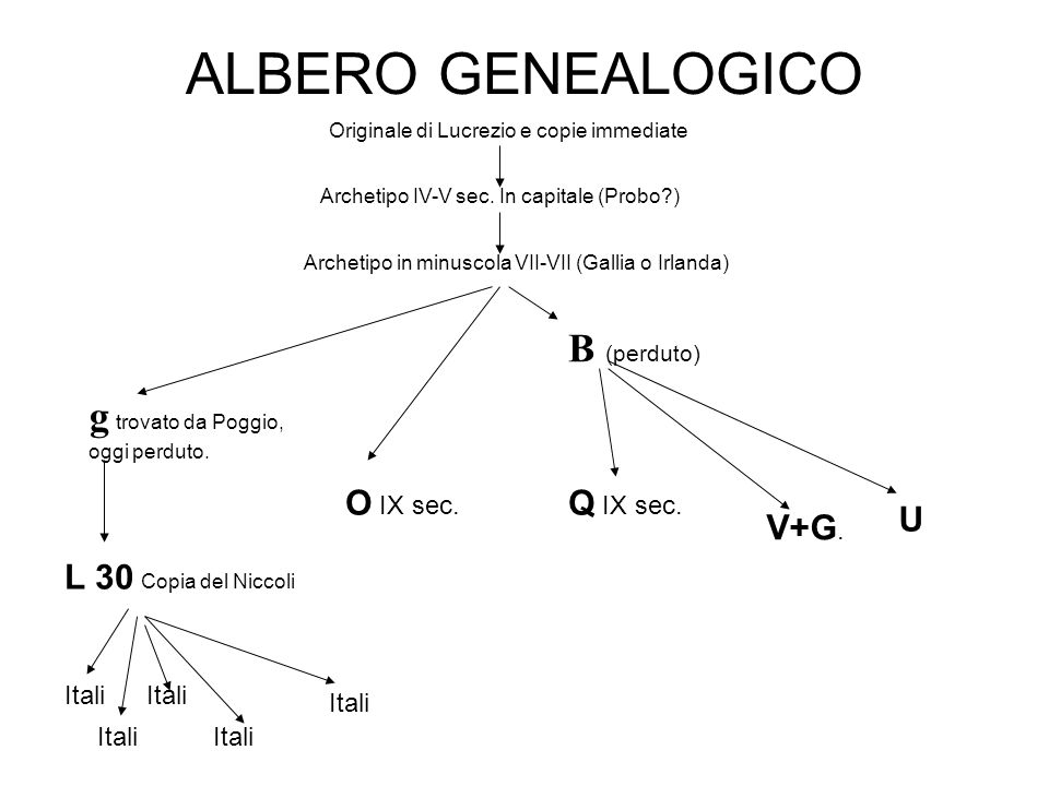 ALBERO GENEALOGICO Originale di Lucrezio e copie immediate Archetipo IV-V sec. In capitale (Probo?) Archetipo in minuscola VII-VII (Gallia o Irlanda)